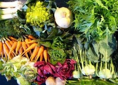 le verdure invernali - di tutti i sapori