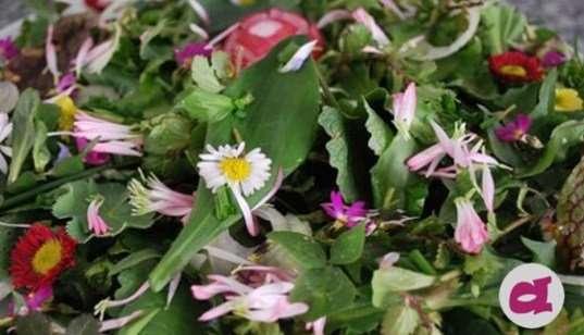 le verdure di marzo - di tutti i sapori