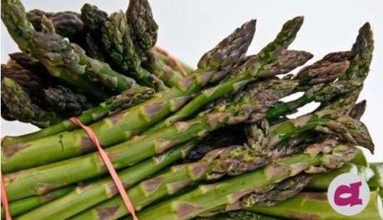 le verdure di aprile - di tutti i sapori